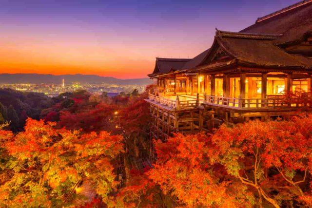 京都の安い医療脱毛